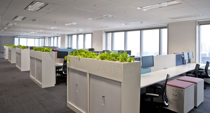 ST1 - Filing Storage with Planters above