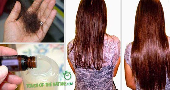 Just Add These Two Ingredients To Your Shampoo And Say Goodbye To Hair Loss Forever – Touch Of The Nature