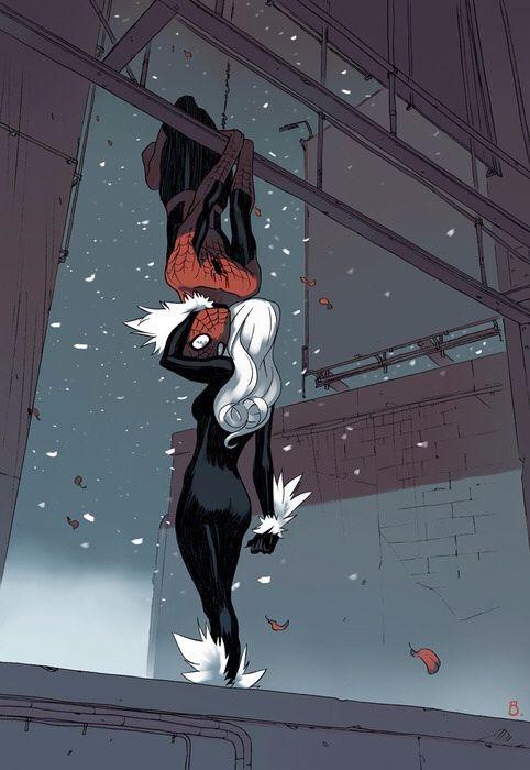 Spider-Man y la Gata Negra