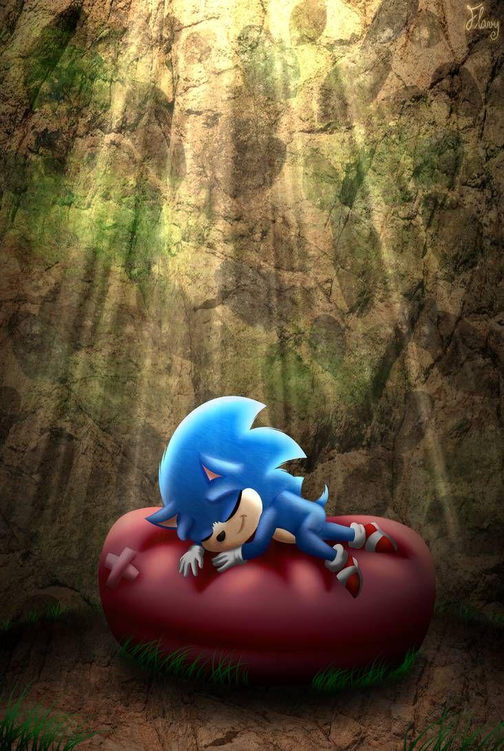 Little One Sleeping All Alone By Thetigressflavy On Deviantart En 2020 Sonic Sonic El Erizo Erizos