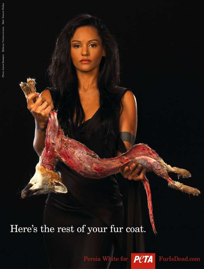 Best Shock Advertising Images On Pinterest - 35 controversial shocking adverts make stop think