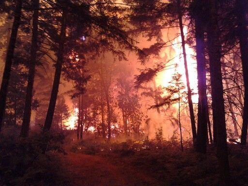 Douglas Complex Wildfire 2013 | Douglas complex fire, Glendale Oregon