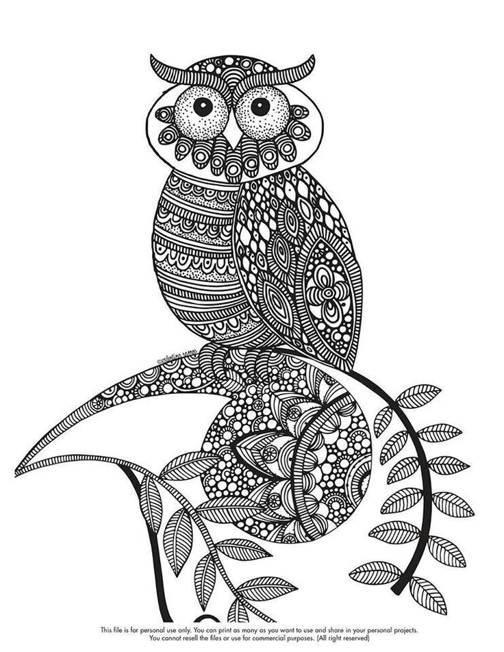 zentangle owl coloring pages - photo#31