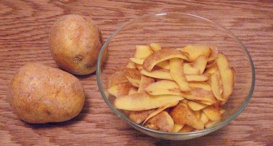 Edelstahl,Leder, Glas reinigen frische Kartoffelschalen (oder eine halbierte Kartoffel) auf die verschmutzten Flächen mit der feuchten Seite reiben,einwirken lassen, anschließend abspülen, oder mit einem feuchten Lappen abwischen Bei Bedarf wiederholen