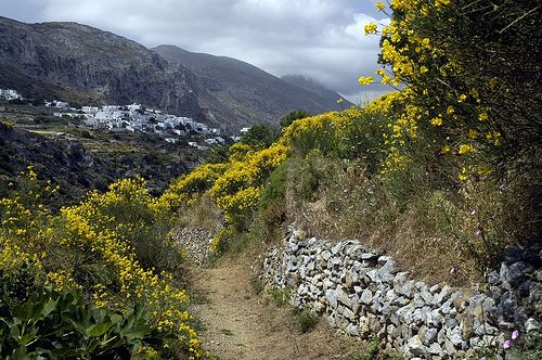 Track to Langada, Amorgos by Alan_W100, via Flickr