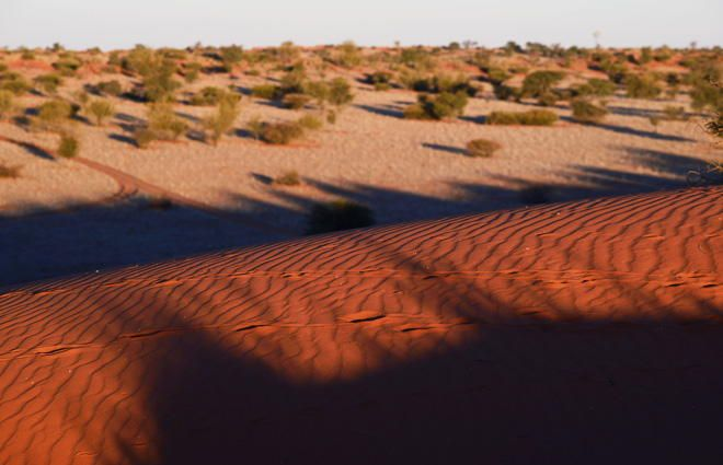 Kalahari, Namibia by alessandro vasari on 500px