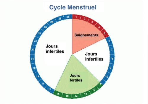 Menstrual Cycles Retirement Home