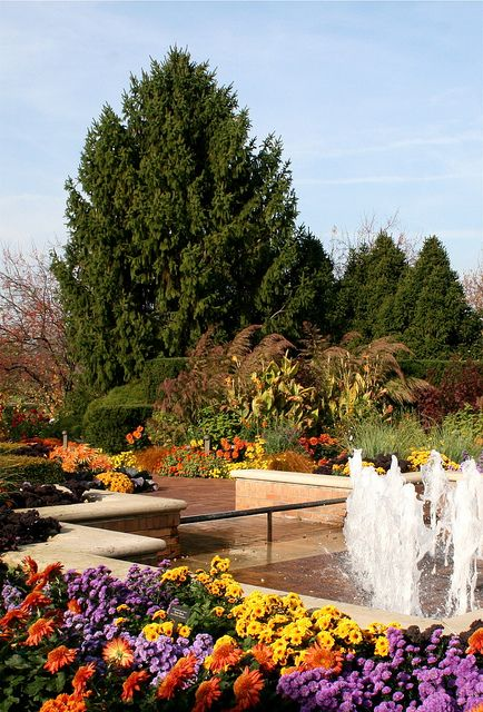 60 Best Images About Chicago Botanic Gardens On Pinterest 640 x 480