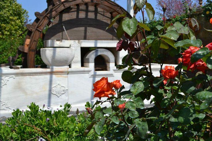 Wedding venue in Chios: Argentikon Luxury Suites ~ Weddings in Greece