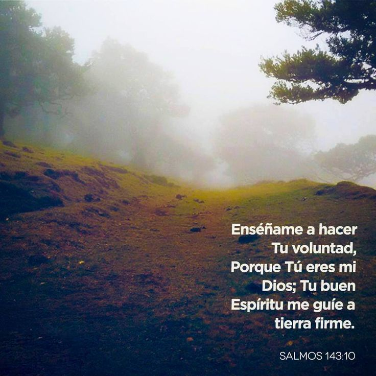 129 best images about salmos on pinterest psalm 23 tes for Ensename todo