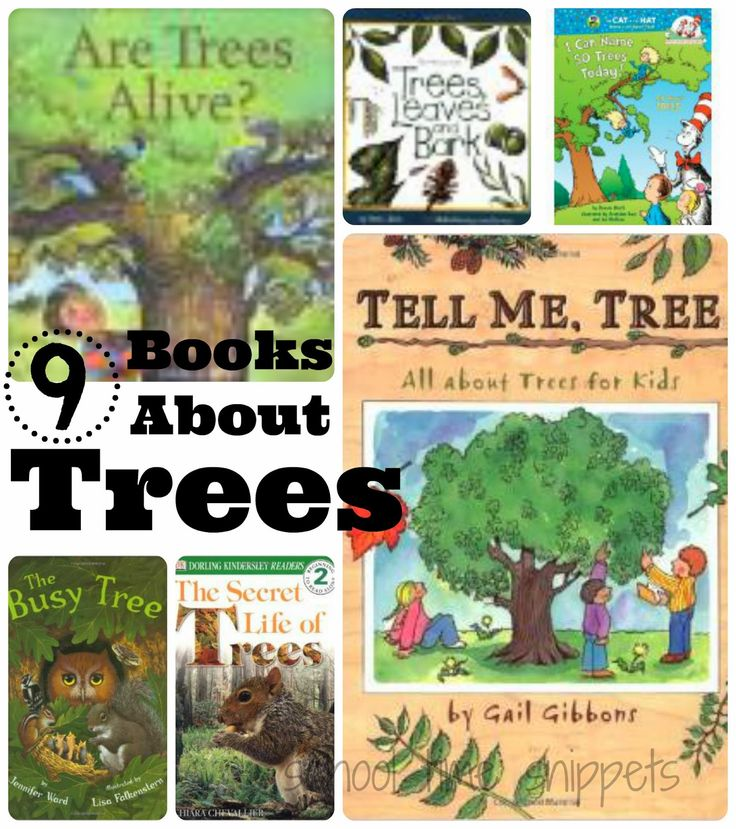 Explore the outdoors!  Before you go, read one of these books to learn more about trees.