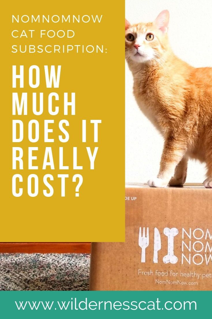 How Much Does Nom Nom Cat Food Cost Cat Food Cat Food Brands Pet Food Delivery