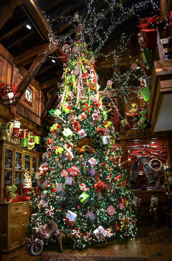 1000 Images About Angus Barn Holiday Decorations On