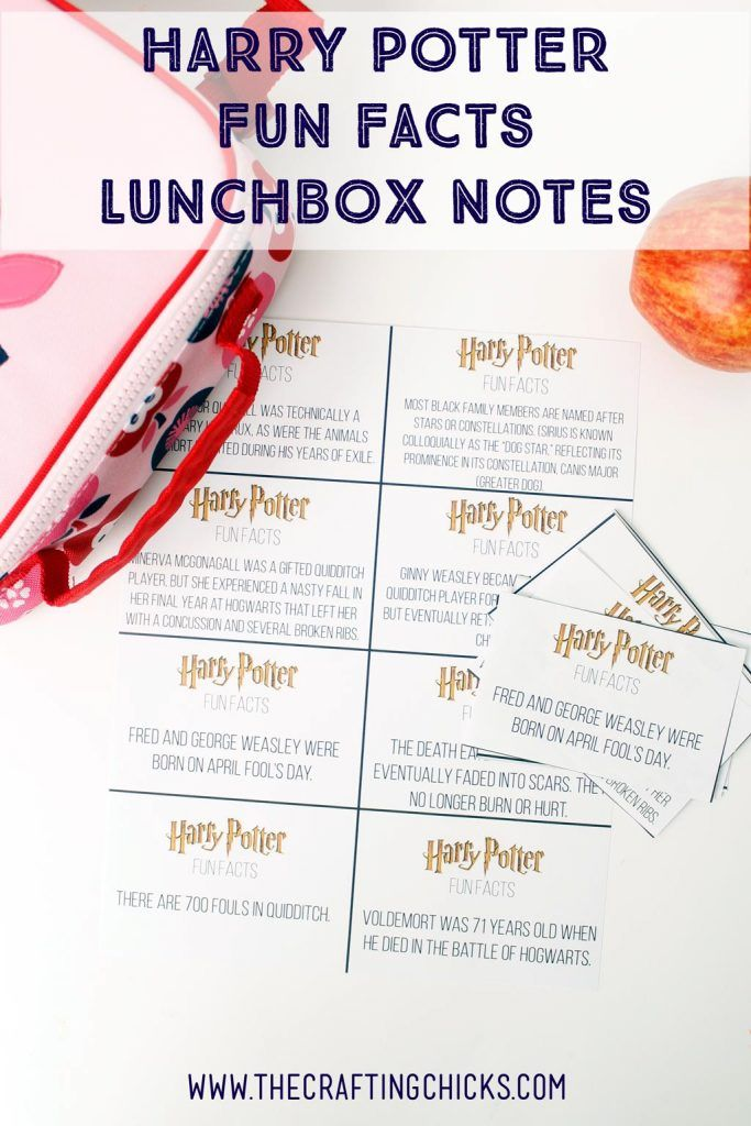 Harry-Potter-Lunchbox