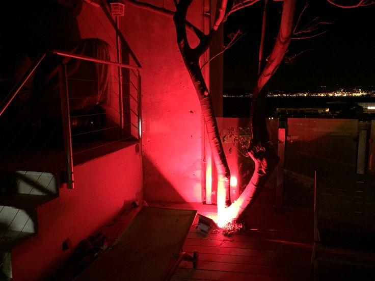 Éclairage du0027un projecteur LED 50W waterproof 6000K avec détecteur de - eclairage exterieur detecteur automatique