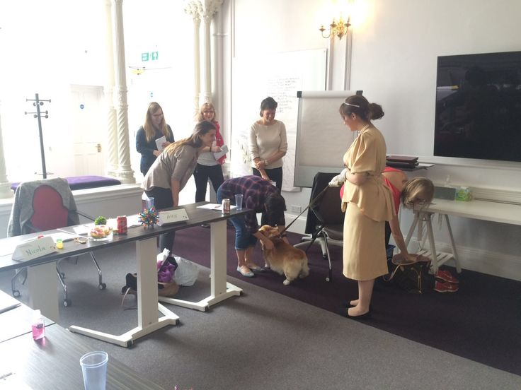 We had a great day yesterday celebrating the #QueensBirthday surprising our delegates with the Queen and her Corgi! #makinglearningfun