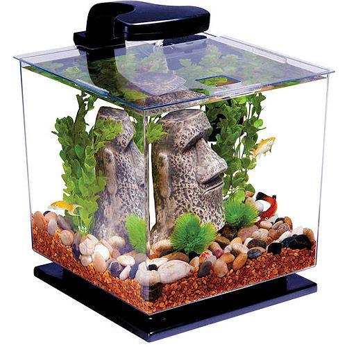 Best 25 3 gallon fish tank ideas on pinterest betta for Fish tank heater walmart