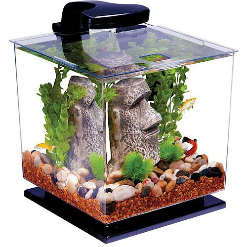 17 best ideas about 3 gallon fish tank on pinterest for Fish tank stand walmart