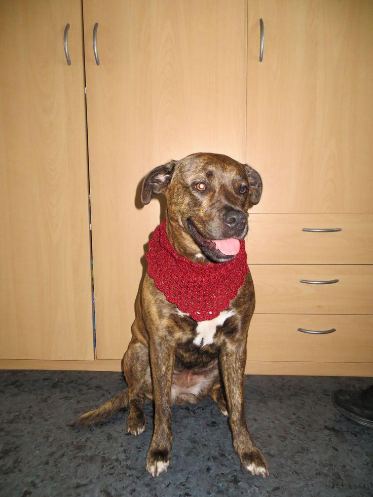 Kyra ook een sjaaltje, love it!