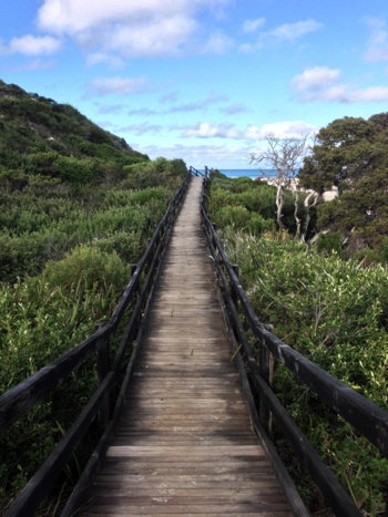 The boardwalk over the dunes to Nanarup Beach, Albany, Western Australia