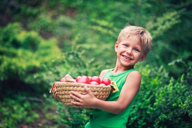 """La tomate est le """"légume-fruit"""" le plus consommé en France. Voici donc quelques manières de la cuisiner."""