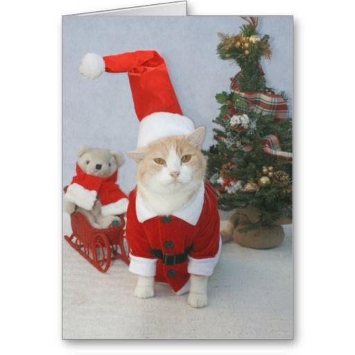 MEOWry Christmas! Greeting Card