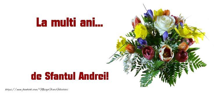 La multi ani... de Sfantul Andrei!