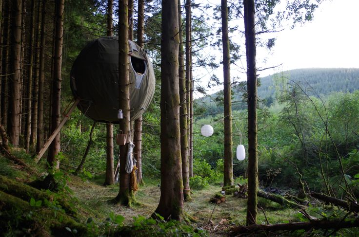 Our first tree tent installed in Welsh forest