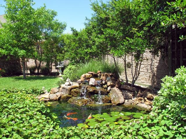 17 best images about ponds on pinterest backyard for Outdoor goldfish pond
