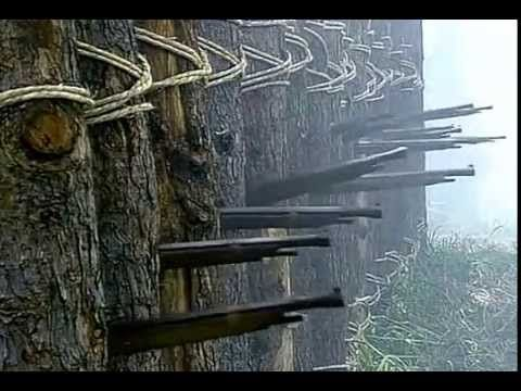 YouTube: a great reenactment of the battle of 1575 where Oda Nobunaga, defeated at great odds an overwhelming force by using old Portuguese obús in formations of 3 roads, creating a wall of projectiles to which the advancing enemy forces would enevetably be destroyed.