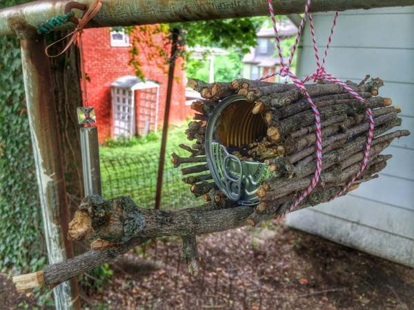 Make a cute bird feeder with old tin can and some of those sticks and rocks