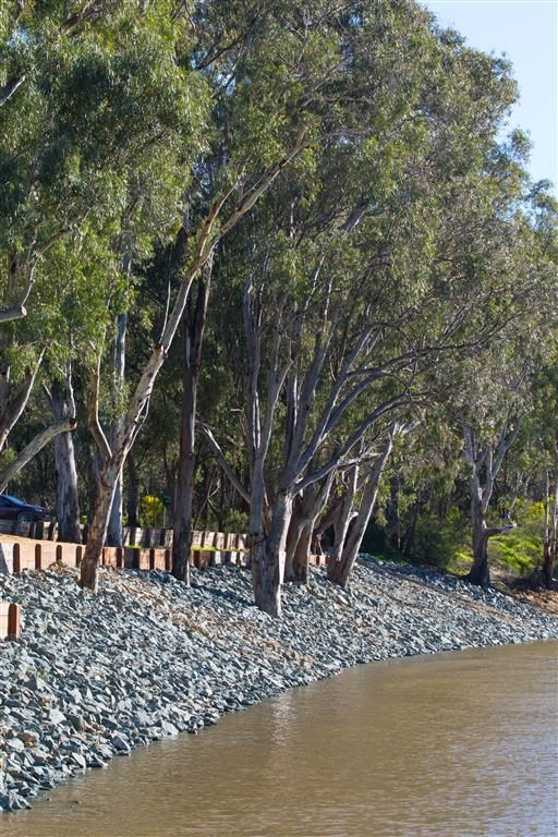 Murray River bank stabilisation Echuca boat ramp.  www.mawsons.com.au