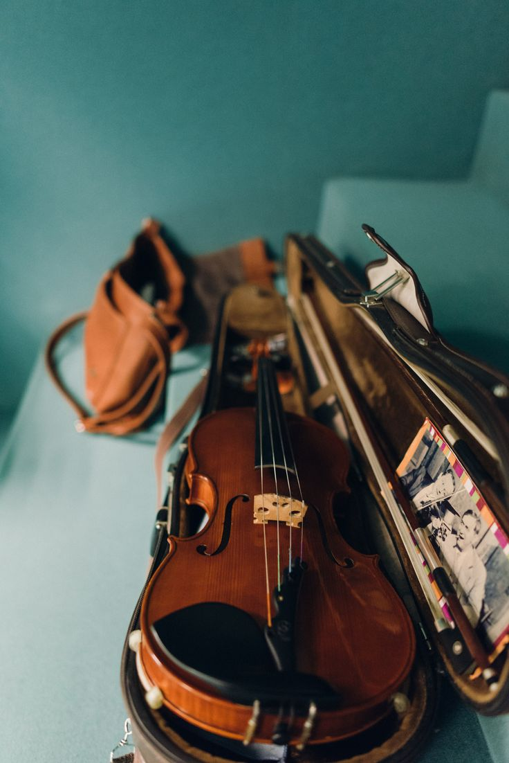 violin | music + musical instruments