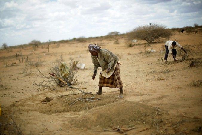 somalia nature - Google-haku