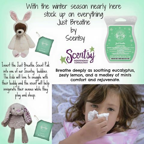 Just Breathe is fantastic in your warmer during those cold months. www.sharih.scentsy.us