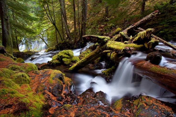 Love Waterfalls