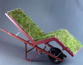 when i was little i got wheeled around in a wheel barrow for fun, this is adult wheeling around for fun!