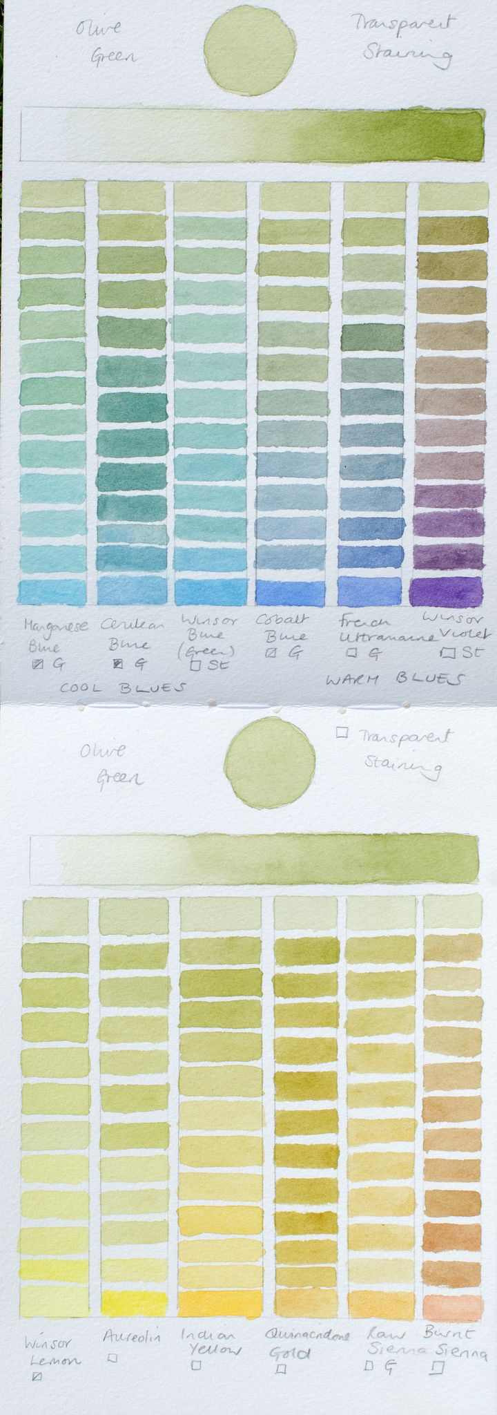 Olive Greens Colour Chart   Flickr - Photo Sharing!
