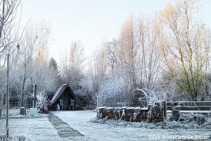 Winterkamperen in onze Peelhut. Voor meer info: www.eco-touristfarm.com