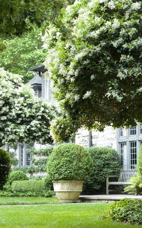 258 Best Images About Howard Design Studio On Pinterest   Gardens