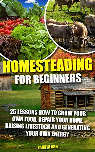 Homesteading for Beginners: 25 Lessons How To Grow Your Own Food, Repair Home, Raising Livestock And Generating Energy (Homesteading Books, Homesteading ... Homesteaders, Backyard homestead) by [Ash, Pamela]