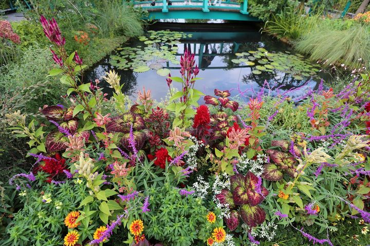 東京にもモネの''睡蓮の池''があった!池袋にある美しすぎる「空中庭園」とは | RETRIP[リトリップ]
