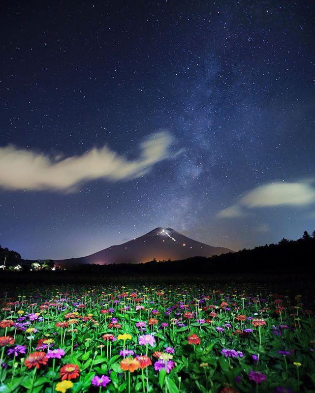 昨夜撮影した一枚より🗻📷 ポップカラーが夜でも華やかな百日草✨キラリと光る富士山に天の川🌌  #富士山 #fujisan #team_jp_ #東京カメラ部 #lovers_nippon #world_capture #Top_ #INSTA_CREW #world_union #wu_japan #photolabo_jp #ig_exquisite #igs_asia #igs_world #gununkaresi #follow #worldcaptures #icu_japan #ourplanetdaily  #igersjp #wow_planet #tokyocameraclub #wonderful_places #キタムラ写真投稿