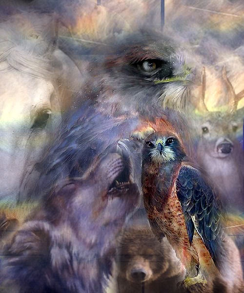 Animal Spirit Guides | Totem Animals | Find Their Meanings