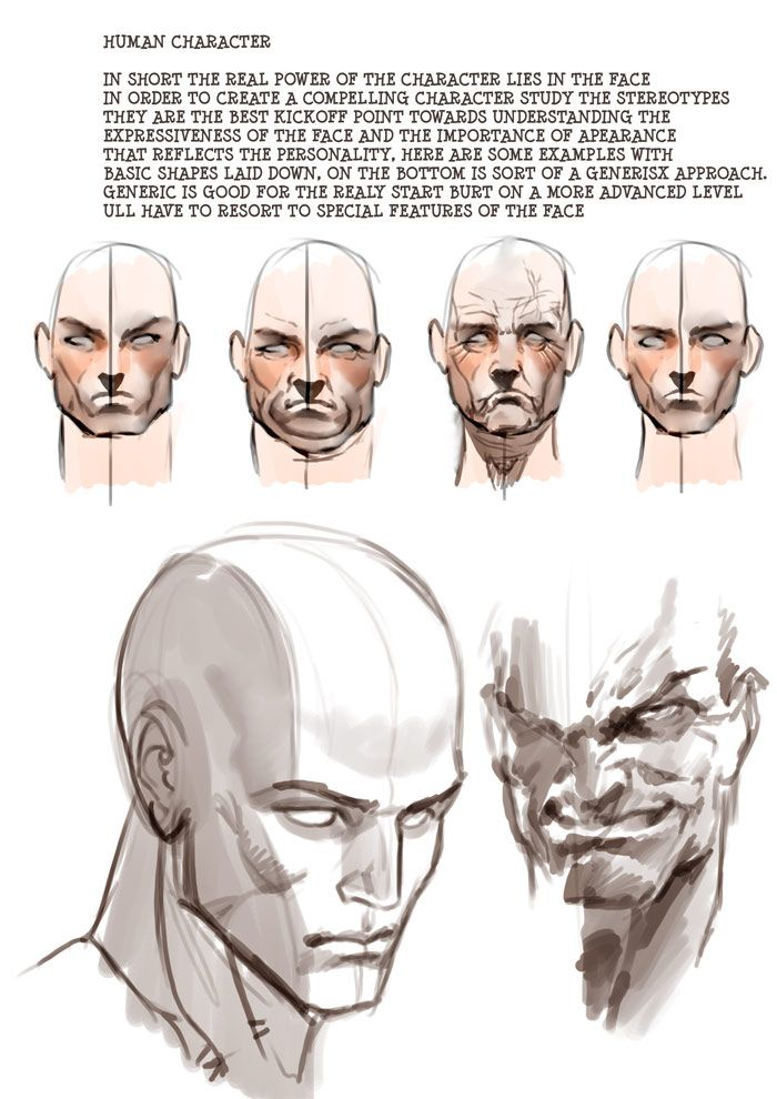 Character Design Tutorials Pdf : Best andrew loomis images on pinterest drawing
