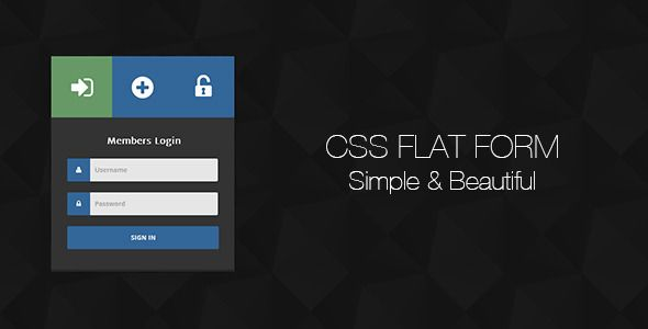 CSS Flat Form
