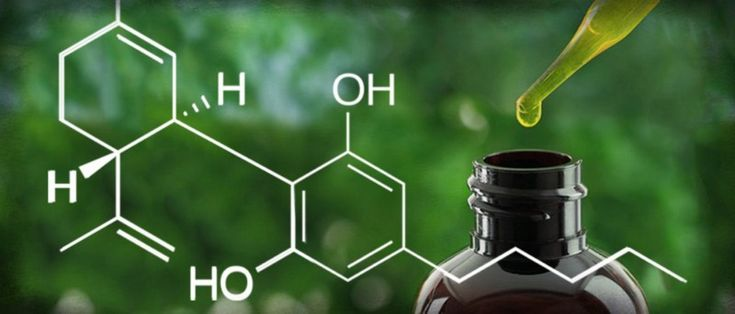 The use of CBD drugs does not pose a risk, said in the report of the World Health Organization (WHO…
