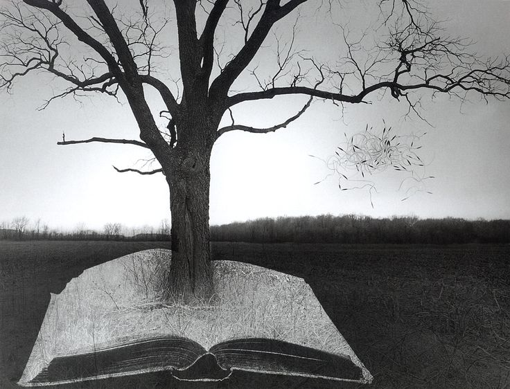 "#Jerry Uelsmann @adaleerut I'm going to name it ""tree if life""."