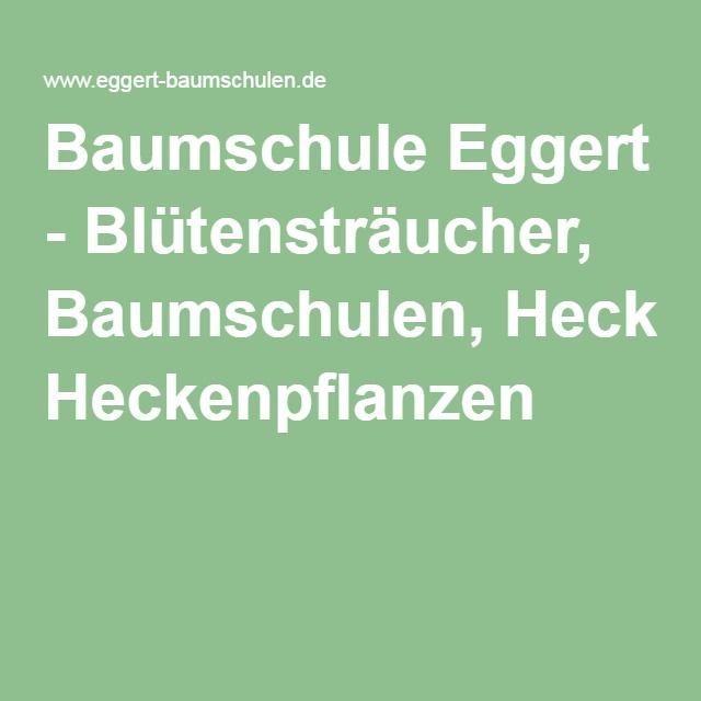 1000+ ideas about Heckenpflanzen on Pinterest  Blühende hecke ...