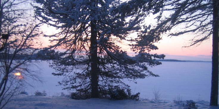 The view from my cottage in Kuhmo Finland on Christmas 2009. Photo: Raija Forsström